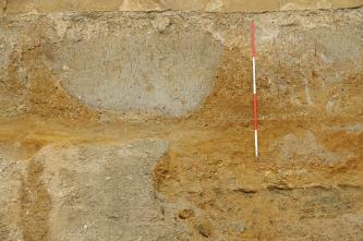 Das Bild zeigt eine Nahaufnahme eines Aufschlusses. Man erkennt helle, rundliche Strukturen, welche sich in orange verwittertem Gestein befinden. In der rechten oberen Bildhälfte befindet sich ein rot-weißer Maßstab.