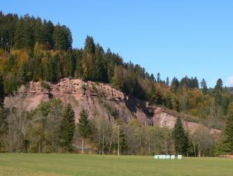 Das Bild zeigt die offene Seite eines Steinbruches, halb verdeckt von Bäumen. Das rötliche, nach rechts absinkende Gestein ist auf der welligen Kuppe bewaldet.