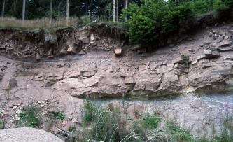 Das Bild zeigt die unter Wald liegende, meist rötlich braune Wand eines Steinbruches. Das unter der Kuppe bröckelige Gestein hat in der Mitte einen glatteren Verlauf, ehe rechts unten eine völlig andere, eher bläulich gefärbte Schicht folgt.
