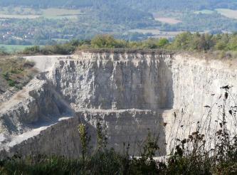 Von erhöhtem Standpunkt aus blickt man auf drei Seitenwände eines offenen Steinbruches. Die weißlich grauen, streifigen Gesteinsschichten bestehen aus zwei gleich hohen Stufen. Der obere Rand des Bruches ist mit Gebüsch und Bäumen bestanden.