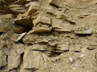 Nahaufnahme einer Steinbruchwand mit gelbbraunem, teils locker geschichtetem Gestein unterschiedlicher Größe und Stärke. Während links größere Brocken liegen, ist rechts und mittig feineres Material zu sehen.
