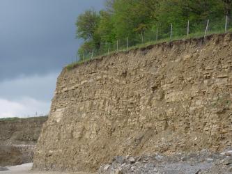 Vorne rechts erhebt sich die steile, fast senkrecht abfallende Wand eines Steinbruchs. Die wellenförmig verlaufenden Gesteinsschichten sind rotbraun bis gelbbraun gefärbt. Die Kuppe ist eingezäunt und bewaldet. Links hinten setzt sich der Steinbruch fort.