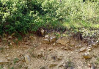 Das Bild zeigt einen mit Gebüsch bewachsenen Schutthang. Lose und hervorstehende Steine bedecken dabei den rötlich braunen Boden.