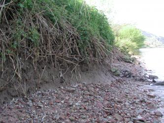 Auf der linken Bildhälfte befindet sich eine mit Gras bewachsene, lehmige Uferböschung. Den Übergang zum Wasser bilden rötliche Kiese.