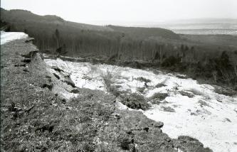 Das Bild zeigt die Abrisskante eines Bergrutsches, von der Kante aus gesehen. Nach unten sind die hellen Bereiche der Rutschmassen sowie am Hangfuß umgestürzte Bäume zu erkennen. Dahinter steht Wald.