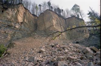Blick auf im zick-zack verlaufende, turmartige Felswände mit bewaldeten Kuppen. Am Fuß der Felswände häuft sich abgerutschtes Gestein.