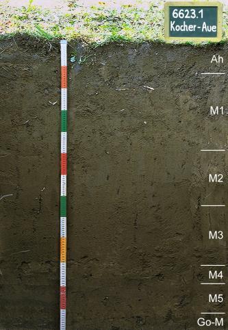 Das Foto zeigt ein Bodenprofil unter Wald. Es handelt sich um ein Musterprofil des LGRB. Das sieben Horizonte umfassende und sehr dunkle Bodenprofil ist über 1 m tief.