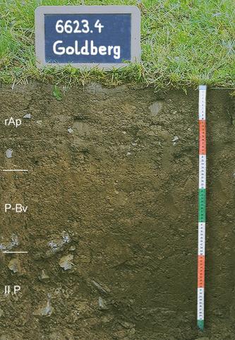 Das Foto zeigt ein Bodenprofil unter Acker. Es handelt sich um ein Musterprofil des LGRB. Das drei Horizonte umfassende Bodenprofil ist etwa 70 cm tief.