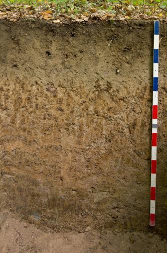 Das Foto zeigt ein Bodenprofil. Es handelt sich um ein Musterprofil des LGRB. Das Bodenprofil ist über 1 m tief.