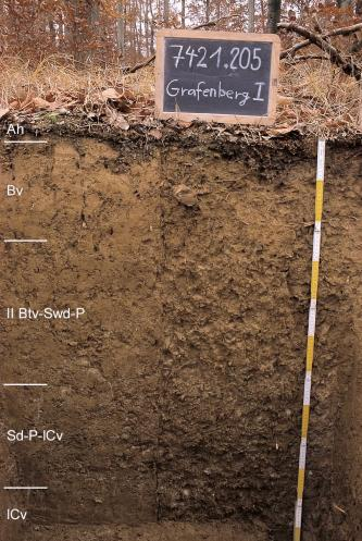 Das Foto zeigt ein Bodenprofil des LGRB unter Wald. Das braune, in fünf Horizonte gegliederte und links leicht geglättete Profil hat eine Tiefe von 1,10 m. Rechts oben zeigt eine Tafel den Namen und die Nummer des Profils an.