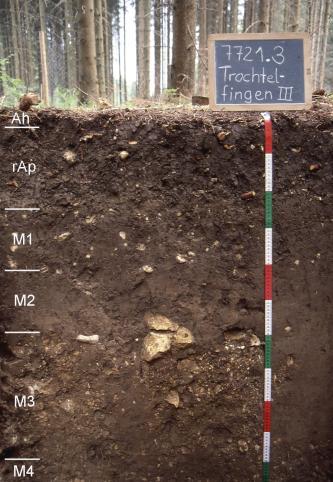 Das Foto zeigt ein Bodenprofil unter Wald. Es handelt sich um ein Musterprofil des LGRB. Das sechs Horizonte umfassende Profil ist über 1 m tief.