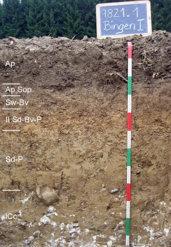Das Foto zeigt ein Bodenprofil unter Acker. Es handelt sich um ein Musterprofil des LGRB. Das sechs Horizonte umfassende Profil ist über 1,10 m tief.