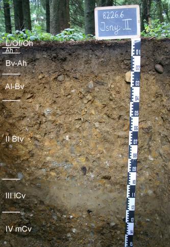 Ungefähr 1,50 m mächtiges Musterprofil eines Bodens, welcher in den oberen 20 cm dunkelbraun und darunter heller und geröllhaltig ist. Links sind die Horizonte eingezeichnet, rechts befindet sich ein Maßstab mit einer Kreidetafel mit Bechriftung darüber.
