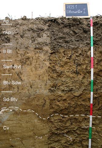 Das Foto zeigt ein Bodenprofil unter Acker. Es handelt sich um ein Musterprofil des LGRB. Das sieben Horizonte umfassende Profil ist 1,20 m tief.