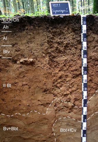Das Foto zeigt ein Bodenprofil unter Wald. Es handelt sich um ein Musterprofil des LGRB. Das in sieben Horizonte gegliederte Profil ist 1,60 m tief.