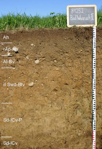Das Foto zeigt ein Bodenprofil unter Acker. Es handelt sich um ein Musterprofil des LGRB. Das sechs Horizonte umfassende Profil ist 1,20 m tief.