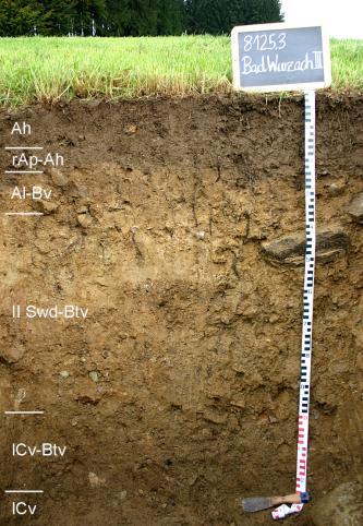 Das Foto zeigt ein Bodenprofil unter Grünland. Es handelt sich um ein Musterprofil des LGRB. Das sechs Horizonte umfassende, hellbraune Profil ist etwa 1,30 m tief.