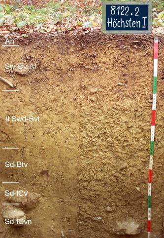 Das Bild zeigt ein Bodenprofil unter Laub. Es handelt sich um ein Musterprofil des LGRB. Das sechs Horizonte umfassende Profil ist 1,35 m tief.