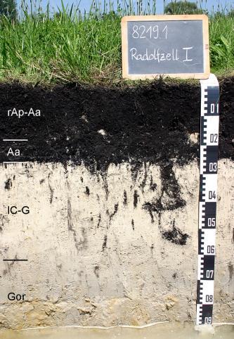 Das Foto zeigt ein Bodenprofil unter Grünland. Es handelt sich um ein Musterprofil des LGRB. Das vier Horizonte umfassende, schwarz-weiße Profil ist etwa 90 cm tief. Am Grund steht Wasser.