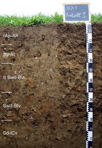 Das Foto zeigt ein Bodenprofil unter Grünland. Es handelt sich um ein Musterprofil des LGRB. Das fünf Horizonte umfassende Profil ist etwa 1,30 m tief.