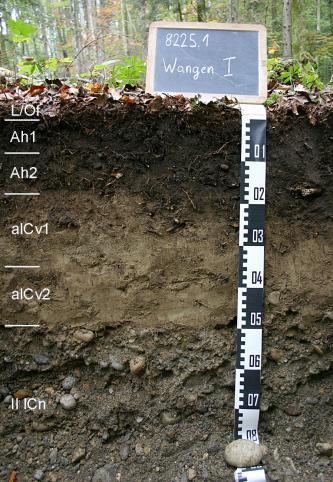 Das Bild zeigt ein Bodenprofil unter Wald. Es handelt sich um ein Musterprofil des LGRB. Das sechs Horizonte umfassende Profil ist 80 cm tief.