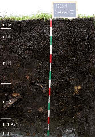 Das Bild zeigt ein Bodenprofil unter Grünland. Es handelt sich um ein Musterprofil des LGRB. Das sechs Horizonte umfassende, schwarzbraune Profil ist 1,50 m tief.