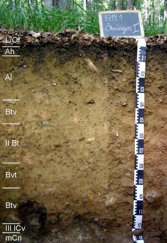 Das Foto zeigt ein Bodenprofil unter Wald. Es handelt sich um ein Musterprofil des LGRB. Das neun Horizonte umfassende Profil ist 1,30 m tief.