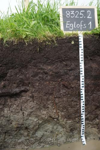 Das Foto zeigt ein Bodenprofil unter Grünland. Es handelt sich um ein Musterprofil des LGRB. Das schwarzbraune Profil ist etwa 80 cm tief. Am Boden steht Wasser.