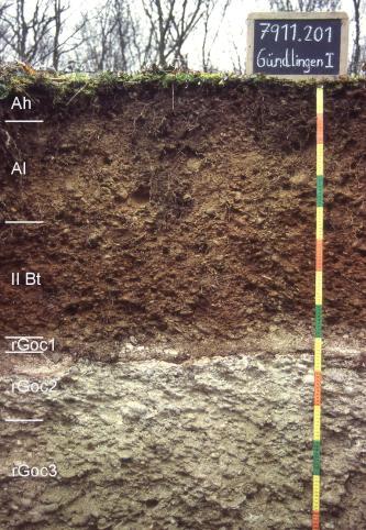 Das Foto zeigt ein Bodenprofil unter Wald. Es handelt sich um ein Musterprofil des LGRB. Das in sechs Horizonte unterteilte Profil ist fast 1,40 m tief.
