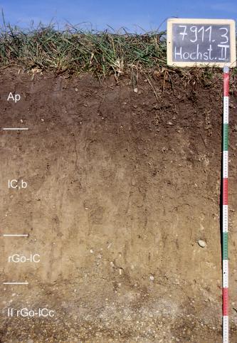 Das Foto zeigt ein Bodenprofil unter Acker. Es handelt sich um ein Musterprofil des LGRB. Das in vier Horizonte gegliederte Profil ist 1 m tief.