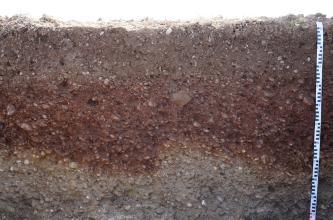 Das Bild zeigt den oberen Teil eines aufgegrabenen Bodenprofils unter Acker. Der gezeigte Teil des rötlich braunen bis grauen Profils ist 1 m tief.