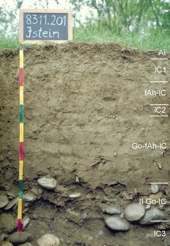 Das Bild zeigt ein Bodenprofil unter Grünland. Es handelt sich um ein Musterprofil des LGRB. Das in sieben Horizonte unterteilte Profil ist 1 m tief.