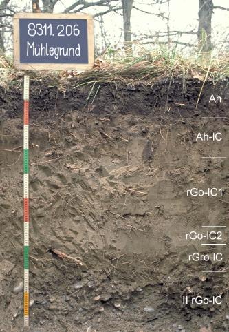 Das Bild zeigt ein Bodenprofil unter Wald. Es handelt sich um ein Musterprofil des LGRB. Das in sechs Horizonte gegliederte Profil ist etwa 1,10 m tief.