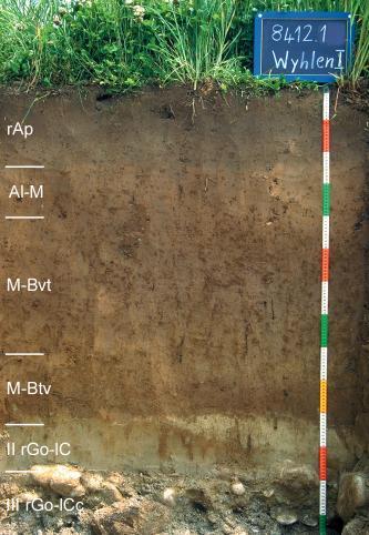 Musterprofil von rötlich braunem, am Boden steinigem Material unter Grünpflanzen. Links am Rand sind sechs Horizonte eingezeichnet. Rechts gibt eine Tafel Namen und Nummer, ein Maßband die Tiefe des Profils an.