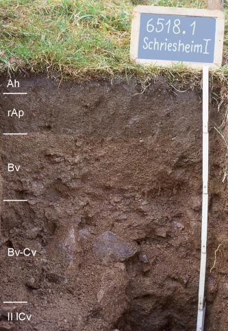 Das Foto zeigt ein Bodenprofil unter Grünland. Es handelt sich um ein Musterprofil des LGRB. Das fünf Horizonte umfassende, dunkelbraune Profil ist 90 cm tief.