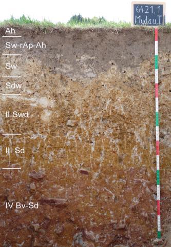 Das Foto zeigt ein Bodenprofil unter Grünland. Es handelt sich um ein Musterprofil des LGRB. Das sieben Horizonte umfassende Profil ist 1,50 m tief.