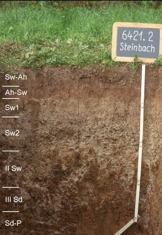 Das Bild zeigt ein aufgegrabenes Bodenprofil unter Grünland. Das Profil ist durch eine beschriftete Kreidetafel als Musterprofil des LGRB ausgewiesen. Das oben hell-, unten dunkelbraune Profil ist über 90 cm tief.