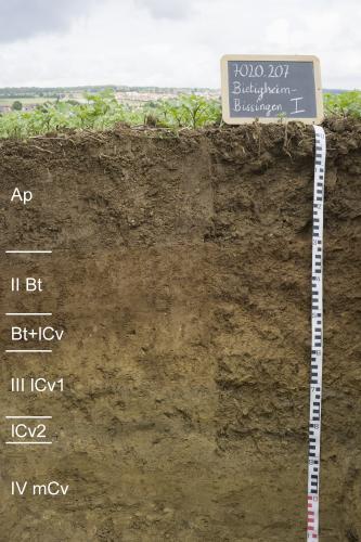 Das Foto zeigt ein Bodenprofil unter Acker. Es handelt sich um ein Musterprofil des LGRB. Das Profil ist 1,20 m tief und in sechs Horizonte unterteilt.