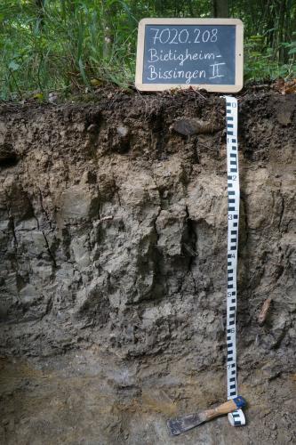 Das Bild zeigt ein Bodenprofil unter Wald. Es handelt sich um ein Musterprofil des LGRB. Das schwärzlich braune Profil ist 80 cm tief.