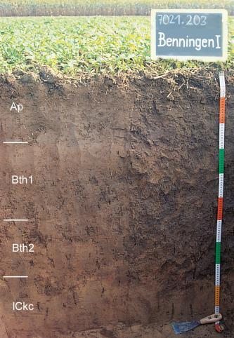 Das Foto zeigt ein Bodenprofil unter Acker. Es handelt sich um ein Musterprofil des LGRB. Das in vier Horizonte gegliederte Profil ist 1,10 m tief.