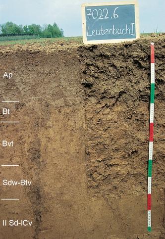 Das Bild zeigt ein Bodenprofil unter Acker. Es handelt sich um ein Musterprofil des LGRB. Das in fünf Horizonte gegliederte Profil ist etwa 1,10 m tief.