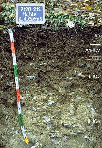 Das Foto zeigt ein Bodenprofil unter Wald. Es handelt sich um ein Musterprofil des LGRB. Das in fünf Horizonte gegliederte Profil ist 1 m tief.