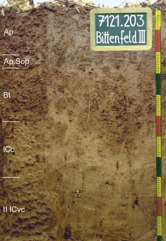 Das Foto zeigt ein Bodenprofil unter Acker. Es handelt sich um ein Musterprofil des LGRB. Das in fünf Horizonte gegliederte Profil ist 1,10 m tief.
