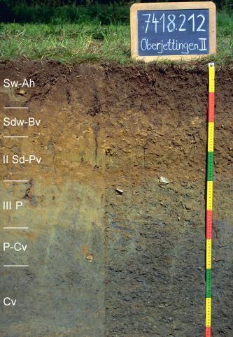 Das Foto zeigt ein Bodenprofil unter Wald. Es handelt sich um ein Musterprofil des LGRB. Das sechs Horizonte umfassende Bodenprofil ist etwa 90 cm tief.