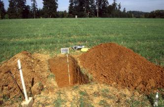 Auf einer Grünlandfläche wurde ein Bodenprofil aufgegraben. Die Stirn- und rechte Seitenwand der Grube sowie die links und rechts aufgehäufte Erde sind rotbraun gefärbt.