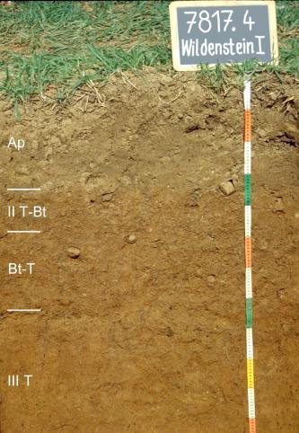 Das Foto zeigt ein Bodenprofil unter Acker. Es handelt sich um ein Musterprofil des LGRB. Das vier Horizonte umfassende Profil ist etwa 1,20 m tief.