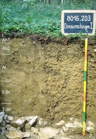 Das Foto zeigt ein Bodenprofil unter Wald. Es handelt sich um ein Musterprofil des LGRB. Das sechs Horizonte umfassende, am Grund steinige Profil ist 1 m tief.