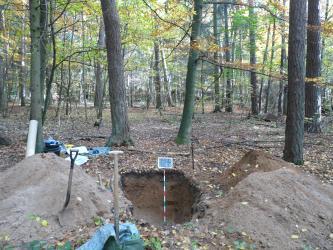 Das Bild zeigt ein aufgegrabenes Bodenprofil inmitten eines lichten Waldes. Links und rechts der Profilgrube ist graubrauner Aushub zu sehen; außerdem Spaten und anderes Werkzeug.