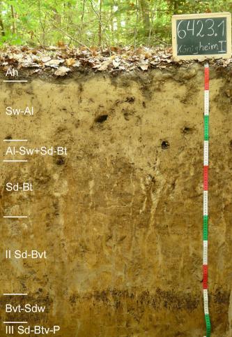 Das Foto zeigt ein Bodenprofil unter Wald. Es handelt sich um ein Musterprofil des LGRB. Das sieben Horizonte umfassende Profil ist 1,10 m tief.