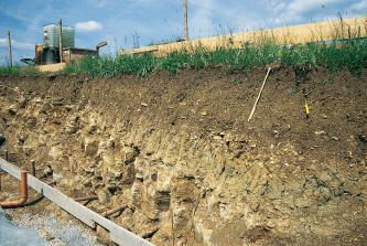 Das Bild zeigt eine Baugrube mit der Profilwand des aufgegrabenen Bodens. Die obere Schicht - rechts höher als links - ist dunkelbraun und steinfrei. Die mittlere und untere Schicht ist gelblich braun, rissig und mit groben Steinen durchsetzt.